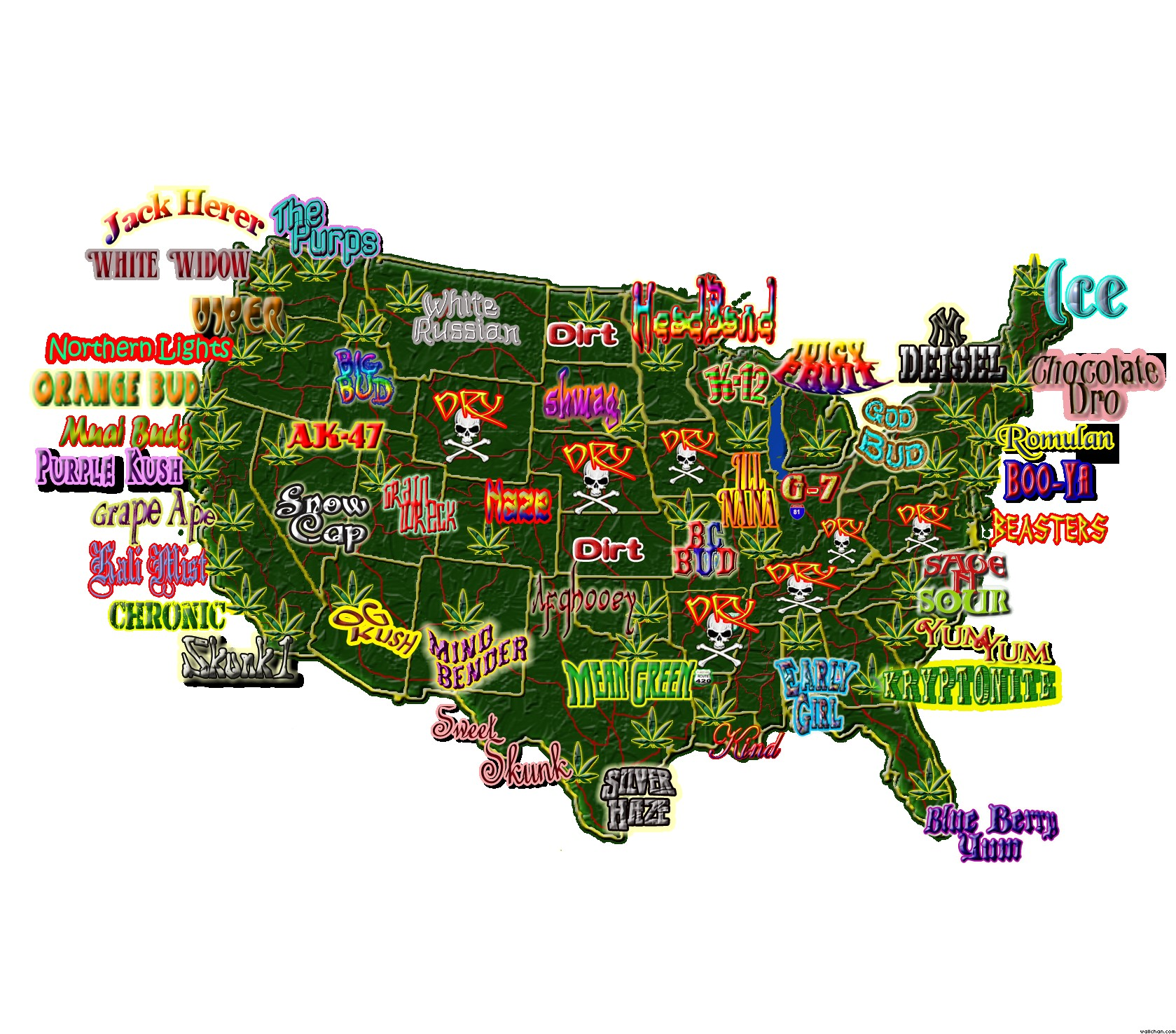 USA Weed Map Archives WeedPad Wallpapers - Geography map usa