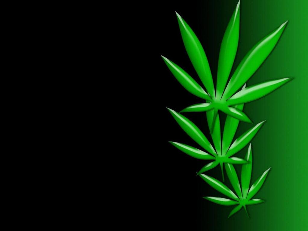 Group Of Marijuana Wallpaper Perfect