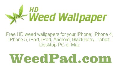 Free Hd Weed Wallpapers Weedpad Com